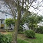 3322 Lombard Avenue-02